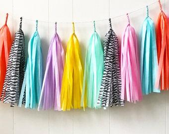 Free Shipping - Rainbow Zebra - Tassel Garland - Clashy Party Decor - Bridal Shower - Nursery Decor - Photo Prop