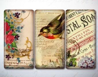 Glass Tile Magnets,  Fridge Magnets, Bird and Flower Magnets,  Best friends gift, Birthday Gift, Mothers Gift, Hostess Gift.