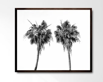 Black and White Art Print, Palm tree print, LA Travel Photo, Los Angeles, Palm tree wall art, Black and White Photo, Modern Art Wall decor