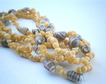 "Vintage Yellow Hawaiian Lei Necklace Mongo Shells Littorina Seashells Brown Tiny Spiral Nassa 50"" Inches Extra Long Single Strand Popcorn"