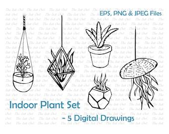 Indoor Plants Line Drawing Set - Aloe, Airplant, Jade, hanging planters, Jellyfish - EPS, PNG, JPG - Digital Vector Image