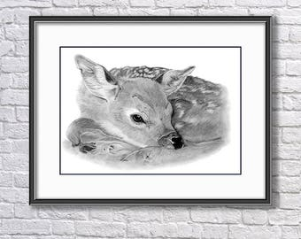 Original Fawn Graphite Drawing, Fawn Drawing, Baby Roe Deer Original Art, Wildlife Original Drawing, Original Pencil  Art, Original Wall Art