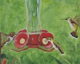Hummingbirds at my feeder limited edition