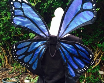 Royal blue iridecent monarch butterfly wings with a bottom tail.