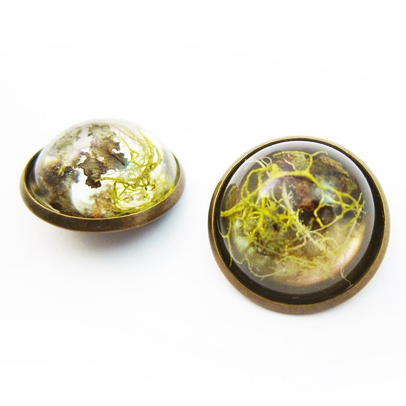 Dome Terrarium Brooch • Botanical Jewelry • Science Jewelry • Plant Pin  • Resin Moss Jewelry • Terrarium Plant Jewelry