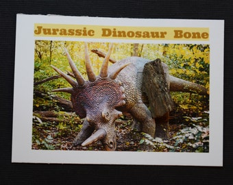 Dinosaur Bone Fossil *** Great Collector's Piece for Youth **** ETD003