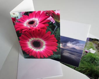 A5 Pink Flower Photograph Greeting Card