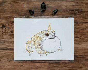Frog illustration print