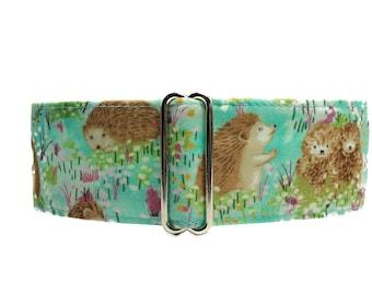 Hedgehog Martingale Dog Collar Greyhound, Aqua Martingale Collar, Hedgehog Dog Collar, Aqua Dog Collar, Greyhound Collar