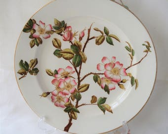 A collectible antique Victorian 'Briar' Aesthetic Movement decorative plate, Stoke Crescent China. c1881. Featuring the sweet briar rose.