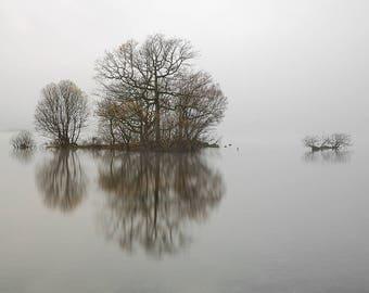 Loch Lomond in Mist / Loch Lomond Print / Trees in Mist Print / Nature Print / Scotland  / Trees in Water / Minimal Print /