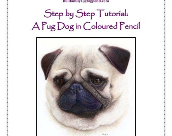 Step by Step Art Tutorial - Pug Portrait in Coloured Pencils by Karen Hull
