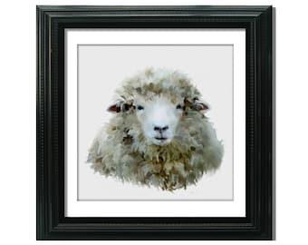 Sheep Fine Art Print, Farm Yard Art, Farm Animal, 8x8 12x12 Country Home Decor