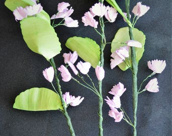 Greenery Flower Foliage