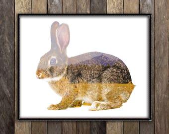 Rabbit Print, Rabbit Lover Gift, Peter Rabbit Nursery, Woodland Animals, Bunny Print, Woodland Wall Art, Double Exposure Photography, Meadow