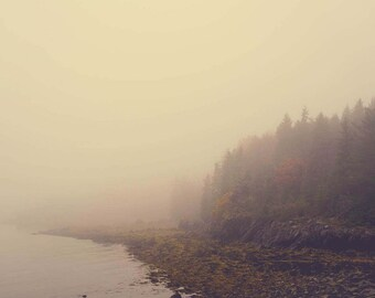 Fog Photograph - Landscape Photograph - Neutral Decor - Rustic - Nature Photography - Maine - Coastal Art Print - Gray Decor - Bedroom Art