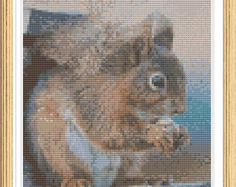 Red Squirrel Cross Stitch Pattern - Squirrel Embroidery Design - Instant Download PDF