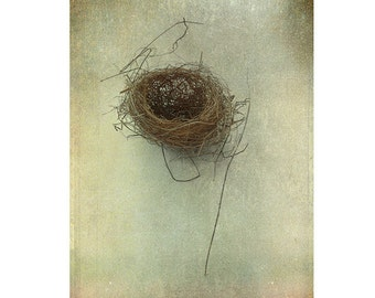 Birds Nest Photograph, Still Life, Hygge Decor, Nature Photography, Fine Art Print, Cottage Chic Wall Decor, Rustic Decor, Minimalist Art