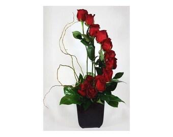 One Dozen Spiral Red Roses