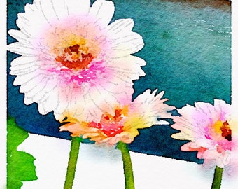 Watercolor Print - Gerbera Daisies - Floral