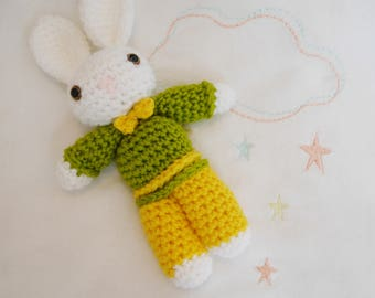 Rabbit in green and yellow clothes