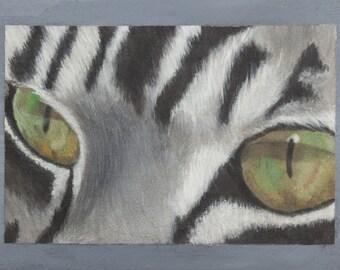 Stampa di quadro a olio da me realizzato, gatto