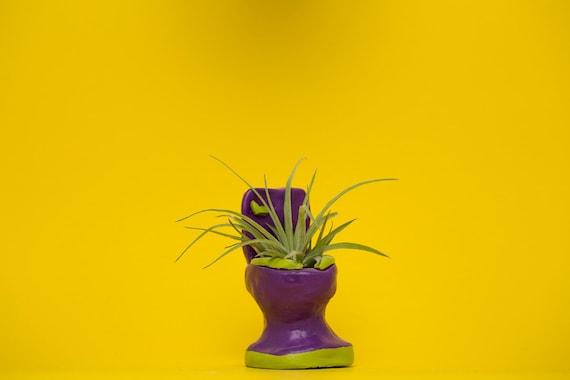 TOILET PLANTER / purpe - lime green