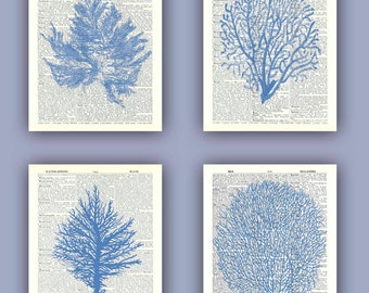 Sea fan art, sea fan coral print, nautical Dictionary Art, bathroom decor, sea fan, wave, sea, swim, mariner, beach cottage decor