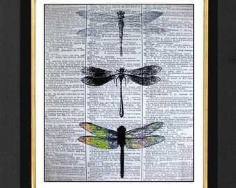 Dragonfly Print, Dragonfly Artwork, Colorful Dragonfly, Dragonfly Clipart, Dragonfly Pictures, Dragonfly Art Print, 8x10 Dictionary Print