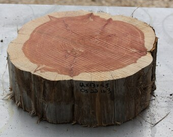 """Large Tree Slab, Texas cedar tree, thick wood slice, unfinished wood, woodworking supply, DIY top for table, plant stand, 12""""x13""""x4.5"""" tall"""