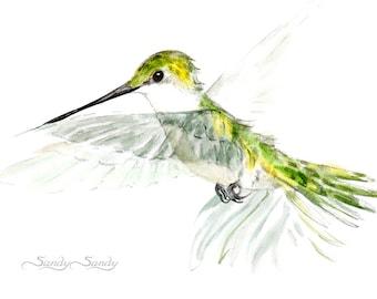 Hummingbird Print - E.