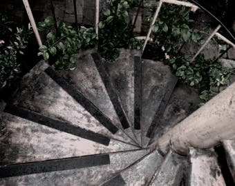 Spiral Staircase Poster Print Black and White Photography Garden Stairs Photo