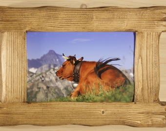 BRUSHED TARINE COW PICTURE WOOD FRAME 3