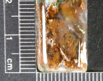 Linda Marie Plume Agate Cabochon from Idaho ALM1