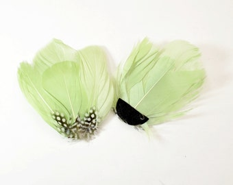Guinea Goose Feather pad - Pale Green (006)