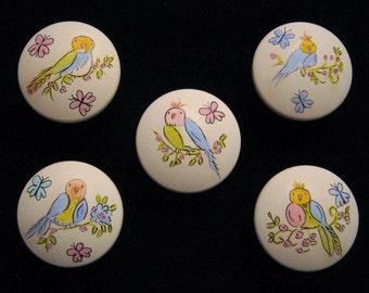 Sweet Pastel Bird Knobs - Hand Painted - Set of 5