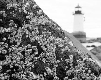 Salem Pickering Light, Rocks, Black & White