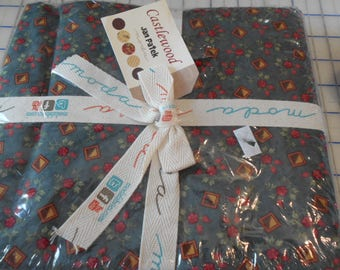 Castlewood  by Jan Patek Quilts for Moda 2140-2b ~ Free Shipping ~