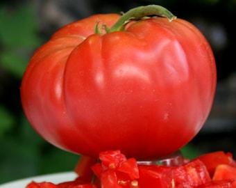 Brandywine Red Heirloom Tomato Seeds Rare Large Beefsteak Grown To Organic Standards