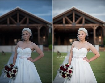 LHP Wedding Presets Vol. 1