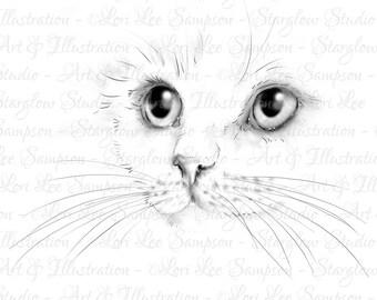 Cat Digital Stamp | Kitten Face Drawing Download | DigiStamp | Kitten Sketch | Craft Supply | Digital Scrapbooking Supplies | Cat Art