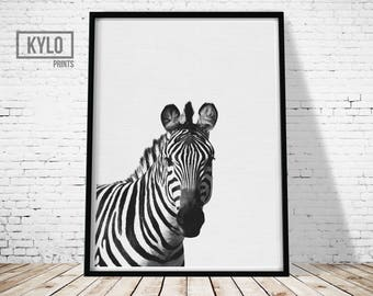 Zebra Print, Safari Animals, Animal Print, African Animal, Zebra Photography, Nursery Decor, Instant Download, Nursery Wall Art, Wall Art