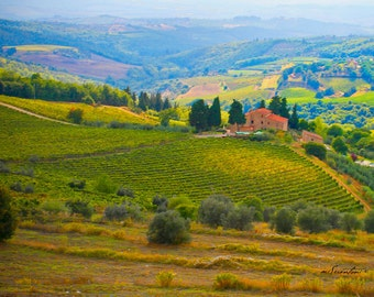 Italy photography - Tuscany landscape - vineyard - Fine art travel photography - How Can I Keep from Singing