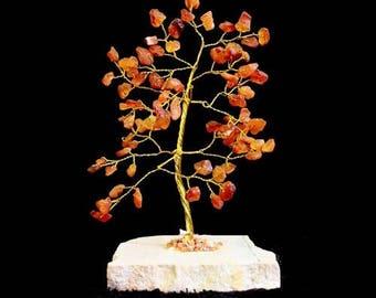 Tree of life 80 red Jasper stones
