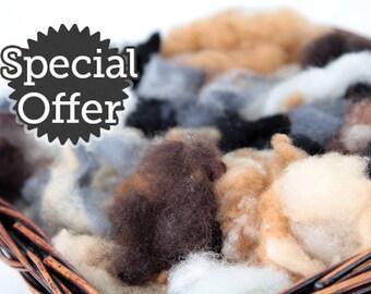 BONUS BUY!  5 LB Grab Bag of Premium Felting Wool