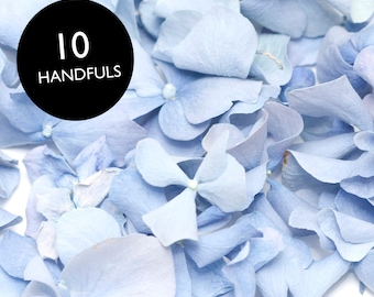 Freeze dried Blue hydrangea petals for wedding confetti /decoration