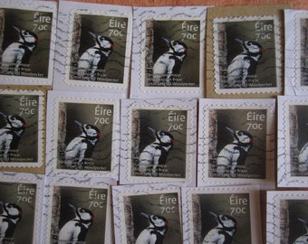 25 Irish Great Spotted Woodpecker 70 eurocent Cancelled Postage Stamps on Paper
