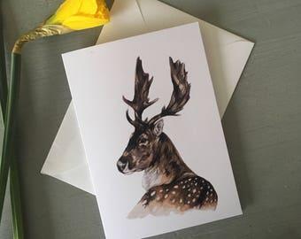Stag-deer- Greeting card-Birthday card-card