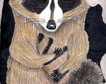 Rocky  Raccoon Art Magnet