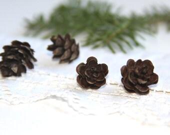 Miniature Winter natural pinecones, mini pinecones, Winter Wedding, Shower party favor, woodland decor, Holidays table decor, white chrismas